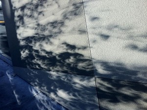 800px-Crescent_Shadows_from_tree_on_wall_May_20_2012_Partial_Solar_Eclipse