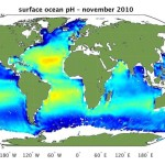 Surface_ocean_pH_node_full_image_2